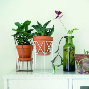 Piedestal för växter Flora WIS
