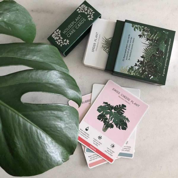 Houseplant Care card Monstera - Skötselråd krukväxter