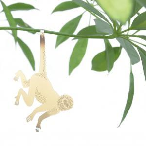Växtsmycke Spider Monkey