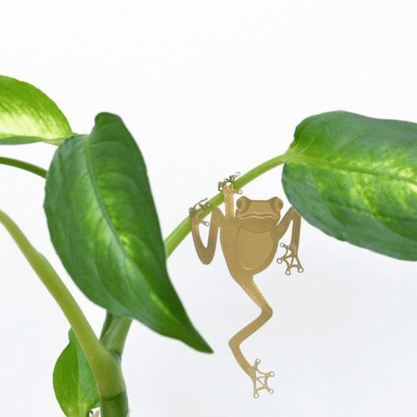 Plant Animal Tree Frog - Växtsmycke Grodan hängande djur