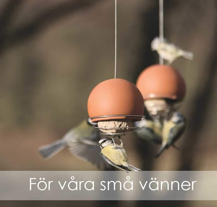 Artiklar för fåglar: fågelmatare och fågelbo