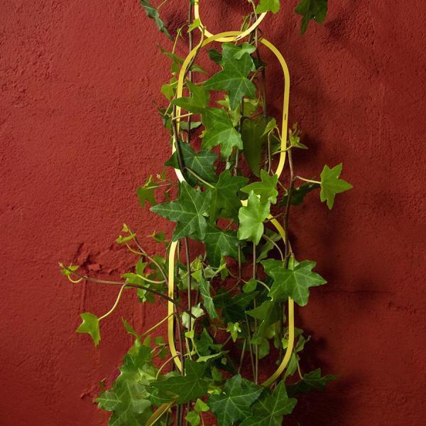 Växtstöd Chain mässing - växtstöd för ett modernt hem