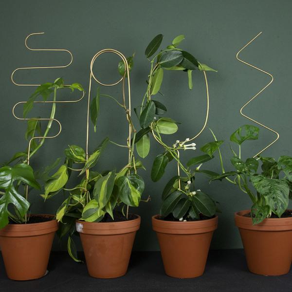 Växtstöd mässing mix