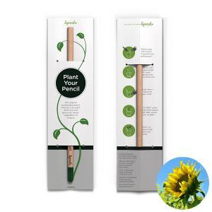 Planterbar penna - Plant your pencil - Solros