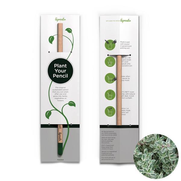 Planterbar penna - Plant your pencil - timjan