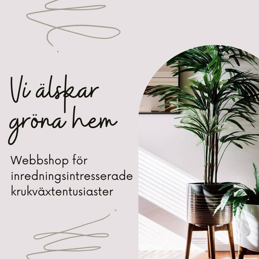 Webbshop för inredningsintresserade krukväxtentusiaster (1)